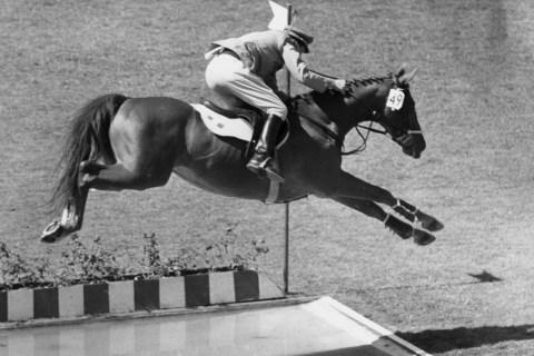 Horse Long Jump